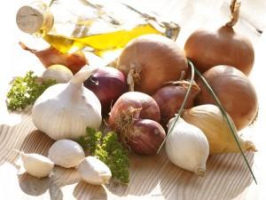 Bulbes et semences potagères