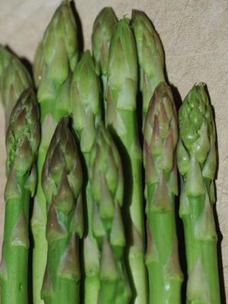asperge verte 39 gijnliim 39 asparagus le jardin du pic vert. Black Bedroom Furniture Sets. Home Design Ideas