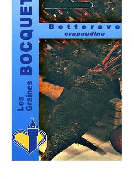 Betteravec rouge 'Crapaudine'