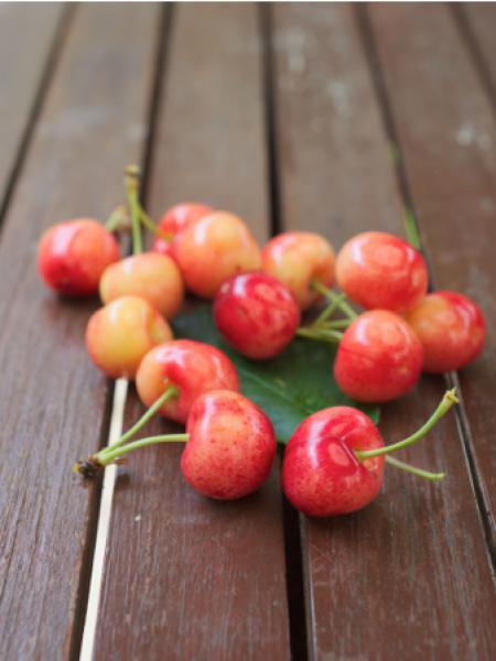 Cerisier 'Bigarreau Coeur de Marmotte'