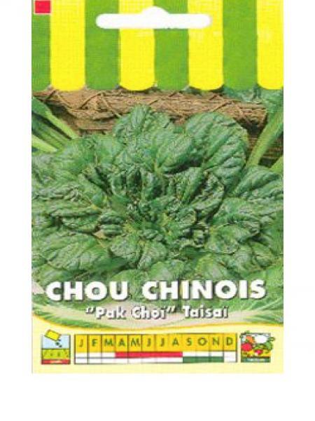 Chou 'Tsaisai'