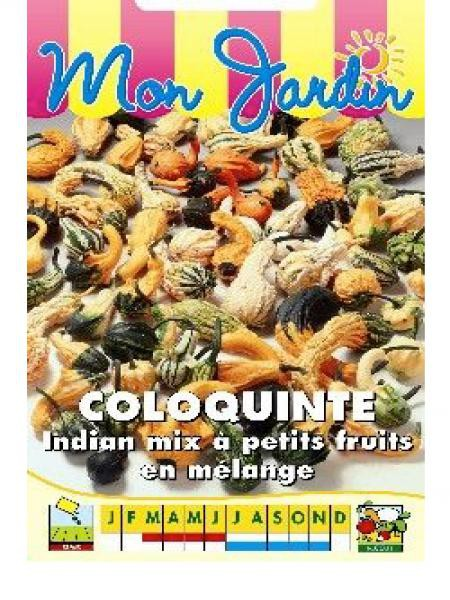 Coloquinte 'Indian Mix Petits fruits'