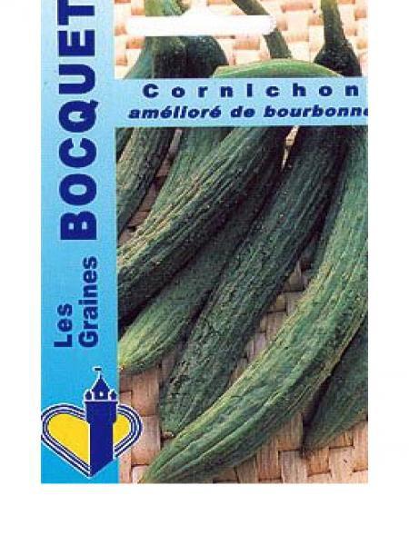 Cornichon 'Amélioré de Bourbonne'