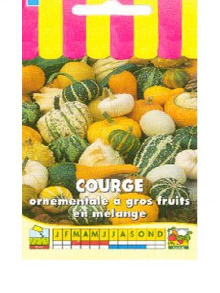 Courge 'Ornementale à gros fruits en mélange