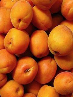 Abricotier Luizet - Prunus armeniaca