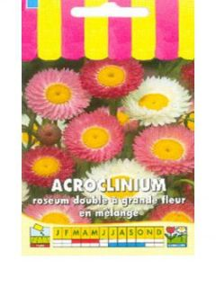 Acroclinium