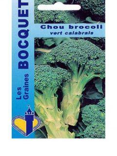 Chou Brocoli Vert Calabrais