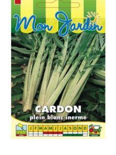 Cardon plein blanc inerme - Cynara cardunculus