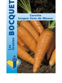 Carotte Longue Lisse de Meaux - Daucus carota