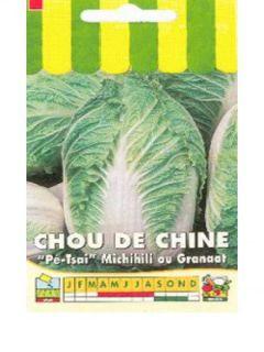 Chou de Chine  Michihili - Granat - Brassica pekinensis