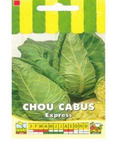 Chou Cabus Express
