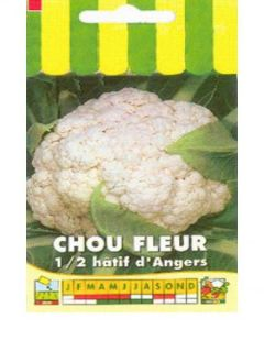 Chou-fleur Extra-Hâtif D'Angers