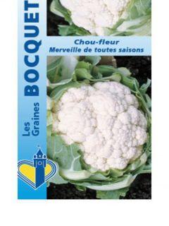 Chou-Fleur Merveille de Toutes Saisons - Vilmorin