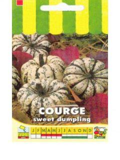 Courge Sweet Dumpling - Cucurbita pepo - Patidou