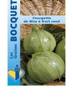 Courge de Nice à fruit rond - Cucurbita pepo