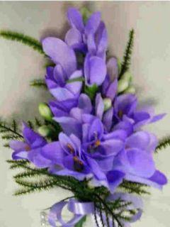 Freesia simple bleu