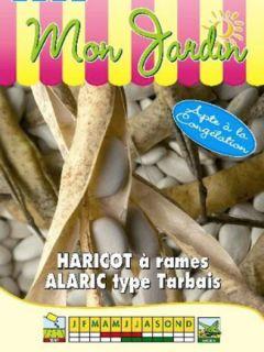 Haricot à rames à écosser Alaric - type Tarbais