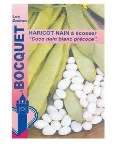 Coco nain blanc (haricot nain à écosser) Bio - Vilmorin