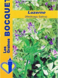 Luzerne Bio - Ferme de Sainte Marthe