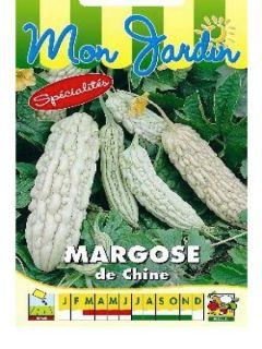 Margose de Chine - Momordica charantia