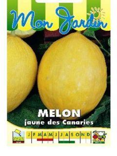 Melon Jaune Canari 2 - Cucumis melo