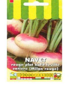 Navet de Milan Rouge Bio - Ferme de Sainte Marthe