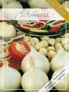 Oignon blanc Snowball en plants (plantation automne)