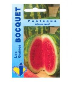 Pastèque Crimson Sweet - Citrullus lanatus