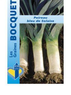 Poireau Bleu de Solaise - Allium porrum