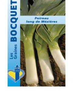Poireau Long de Mezières - Allium porrum