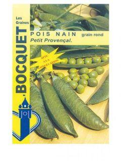 Pois nain Petit Provencal (grains ronds) - Pisum sativum