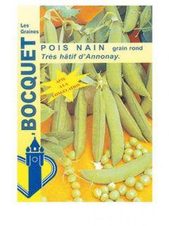 Pois nain Très Hâtif d'Annonay (grains ronds) - Pisum sativum