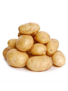 Pommes de terre Belle de Fontenay - Solanum tuberosum