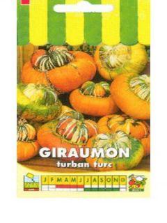 Potiron Giraumon Turban - Cucurbita maxima