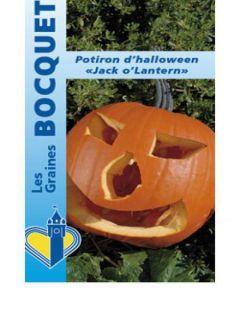 "Potiron d'Halloween ""Jack O'Lantern"" - Cucurbita pepo"