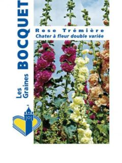 Rose trémière Chater's Double en mélange - Alcea rosea