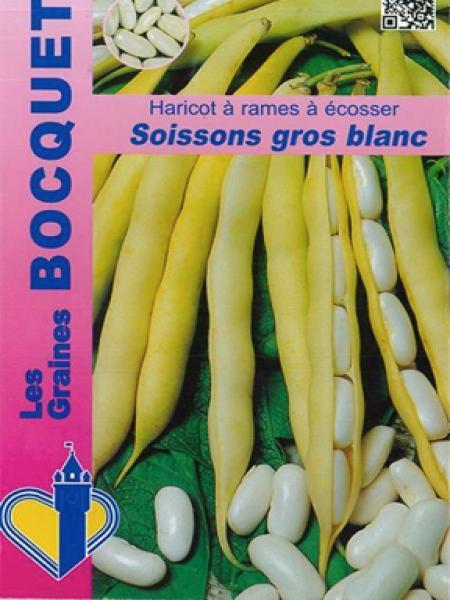 Haricot à rames 'Soissons gros blanc'