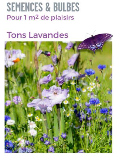 Mélange de bulbes 'Nuances de violet'