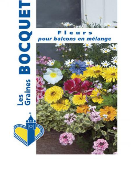 Mélange 'Fleurs à balcons'