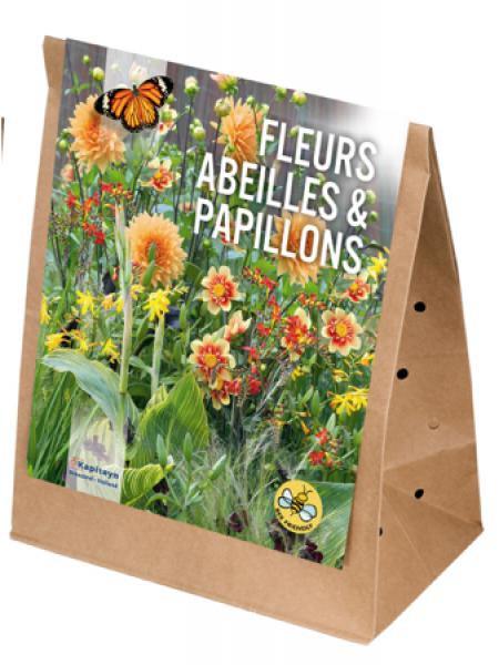 Mélange de printemps pour abeilles et papillons - Autour du orange