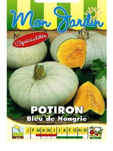 Potiron bleu de Hongrie